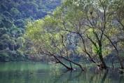 Plum Blossom Lake, Yilan