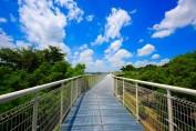 skywalk-at-baguashan